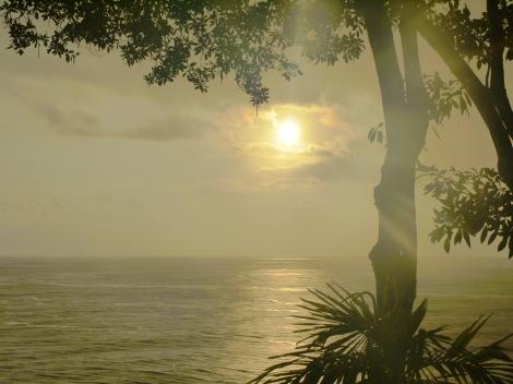 Barbados 2011 059